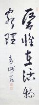 巧芸版華岡青洲書幅「医惟在活物窮理」