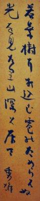 吉野秀雄幅広短冊「若葉樹に」