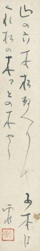 野口雨情短冊「山の六本松」