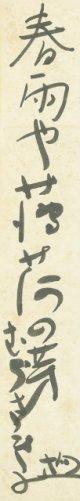 小松均短冊「春雨や」