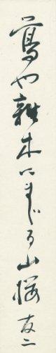 石塚友二短冊「鴬や」