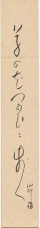 酒井仙酔楼短冊「草の花」