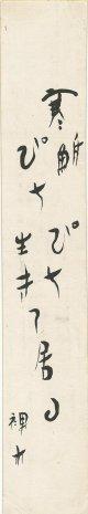 大橋裸木短冊「寒鮒ぴちぴち生きて居る」