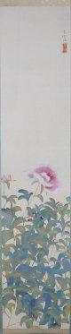 土田麦僊画幅「芍薬図」